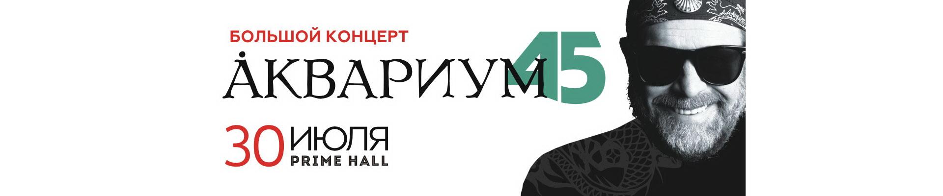 Борис Гребенщиков и группа